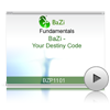 BaZi-Your Destiny Code<br>(BZP1101)