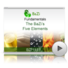 The BaZi's 5 Elements<br>(BZP1103)