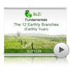 The 12 Earthly Branches (Earthly Yuan)<br>(BZP1105)