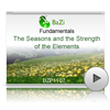 The Seasons and the Strength of the Elements