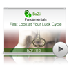First Look at Your Luck Cycle<br>(BZP1110)