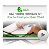 How to Read your Bazi Chart<br>(BZP1201)