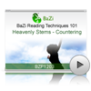 Heavenly Stems - Countering<br>(BZP1203)