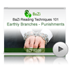Earthly Branches - Punishments<br>(BZP1208)