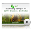 Earthly Branches - Destruction<br>(BZP1209)