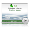 The Day Master<br>(BZP1301)