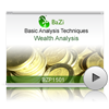 Wealth Analysis<br>(BZP1501)